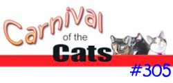 Carnival of Cats Banner