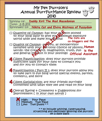 Purrformance-ReviewForm2010