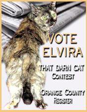 Vote for Elvira (2)