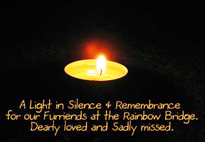 Remembrance-Candle