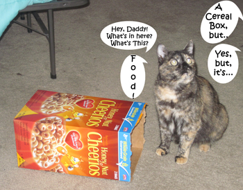 Cereal_Box1
