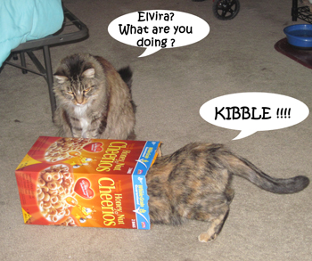 Cereal_Box2