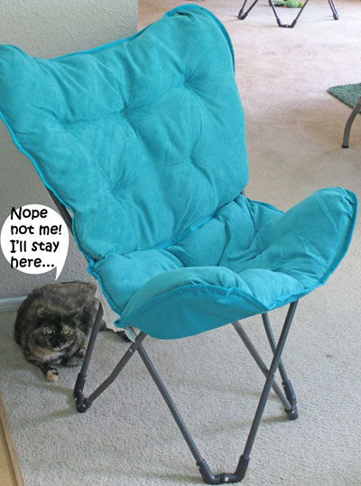 Chair_Issues3