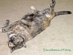 Lazy-Elvira-2-June2012