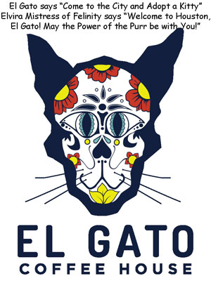 ElGatoHouston